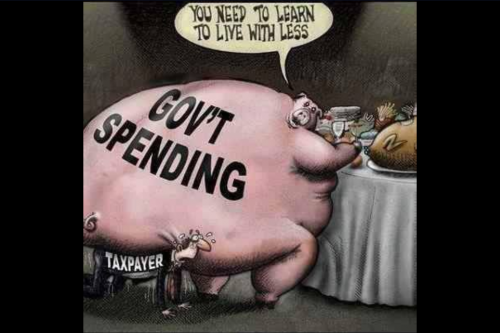 government spending pig