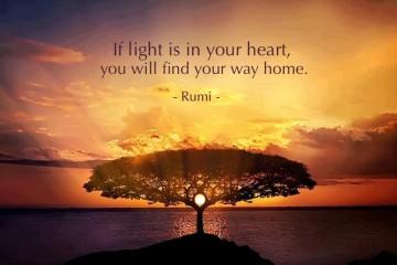 find-way-home